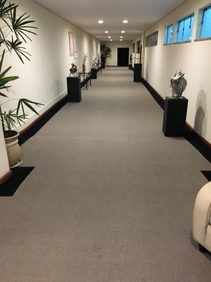 Carpete - rolo São Carlos